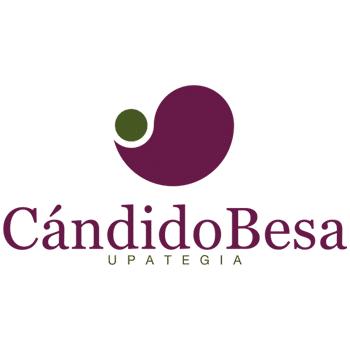 Viticultura - Candido Besa Agrovidar