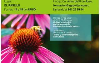 Biodiversidad cultivada en El Rasillo